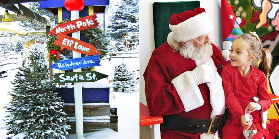 Tree Town Wonderland: Save 50% on a Christmas Tree