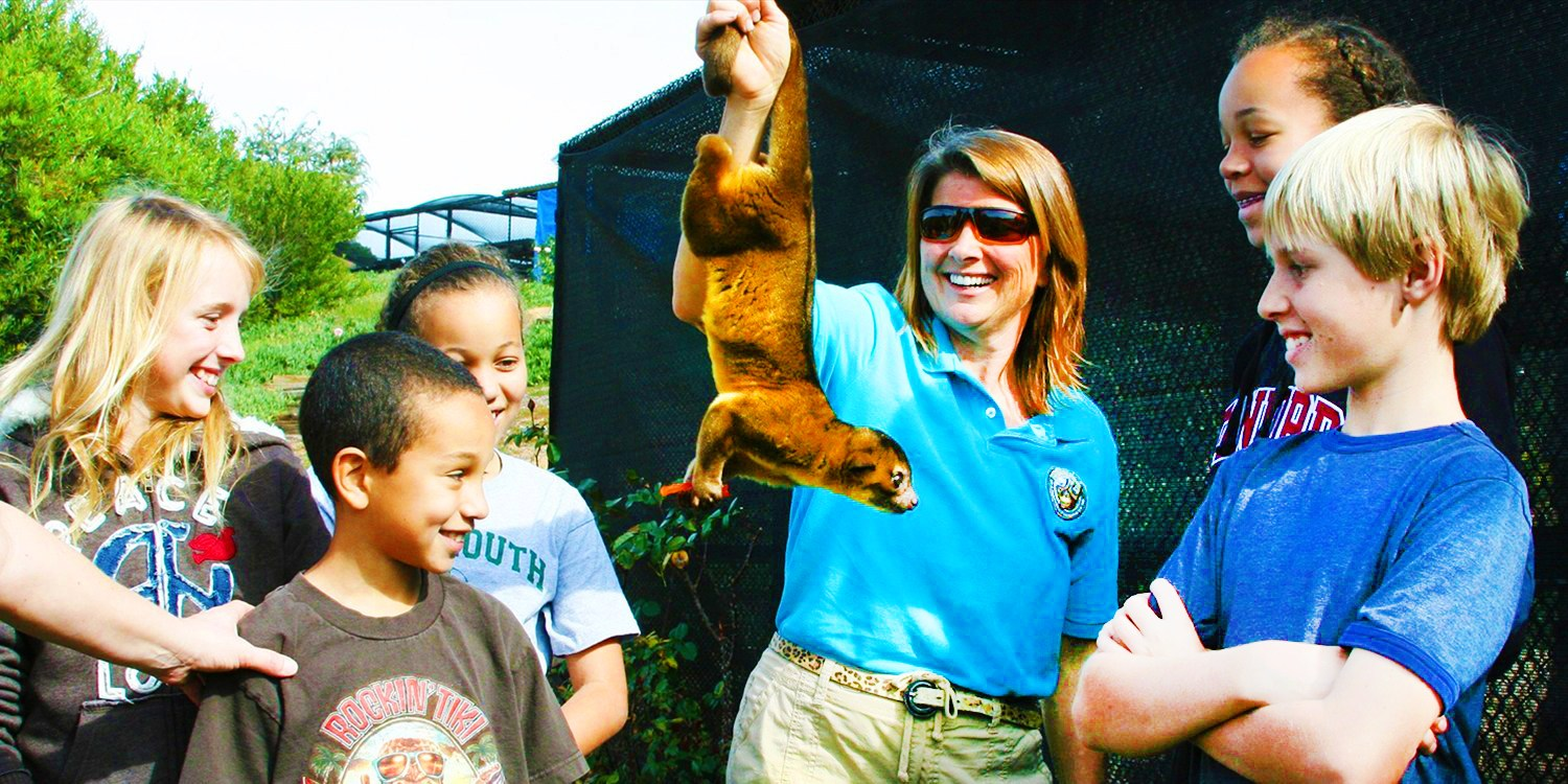 $40 & up -- Wild Wonders: Hands-On Animal Experiences