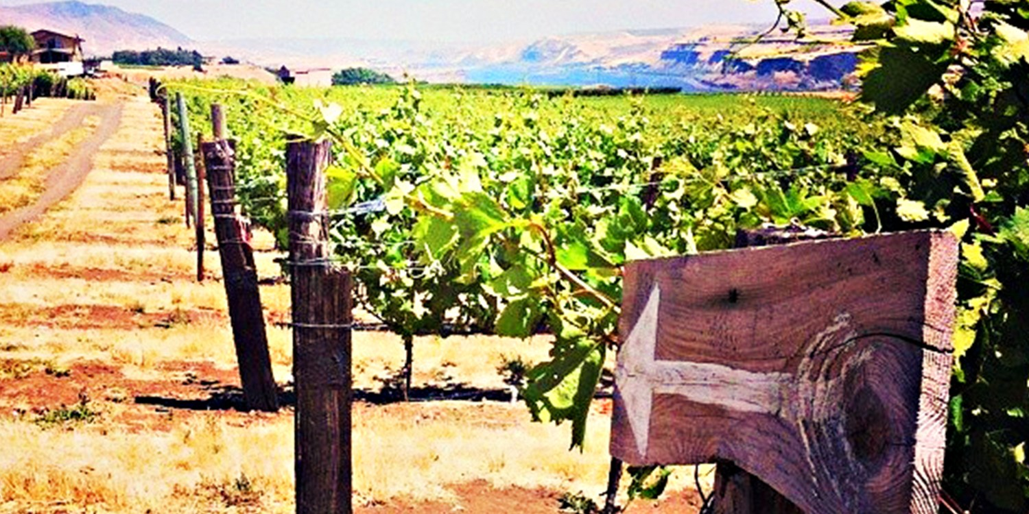 $29 -- Washington Wine Passport for 2: Visit 40+ Locations