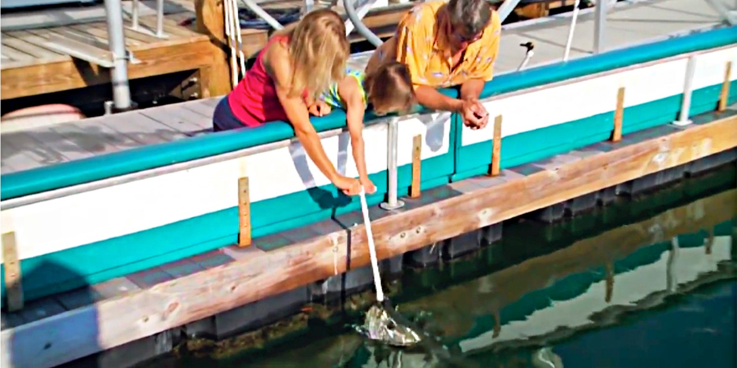 $19 -- Feed Wild Tarpon at Top-Rated Downtown Spot