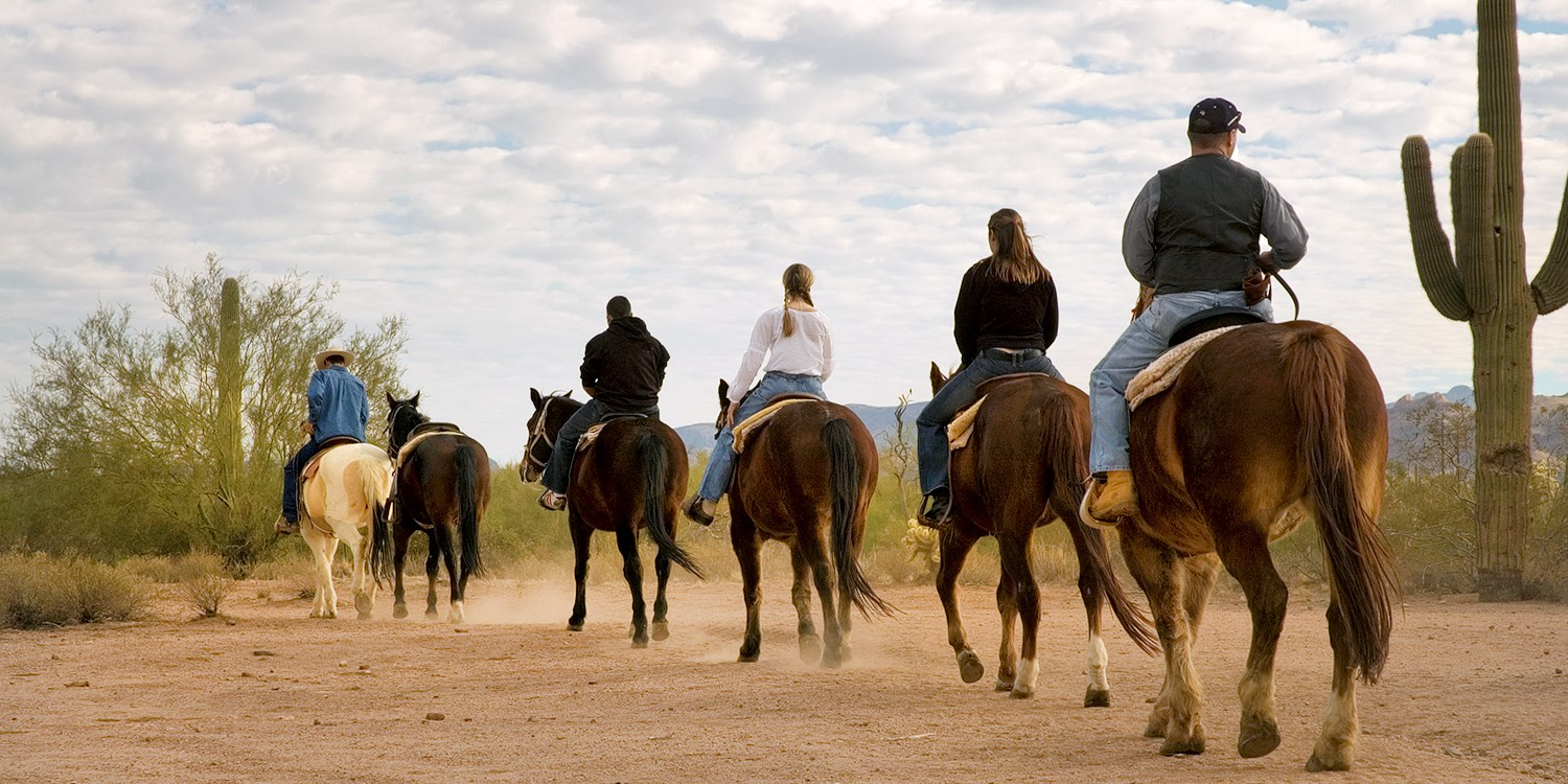 Two-Hour Horseback Rides outside Phoenix for 1-4, Save 50%