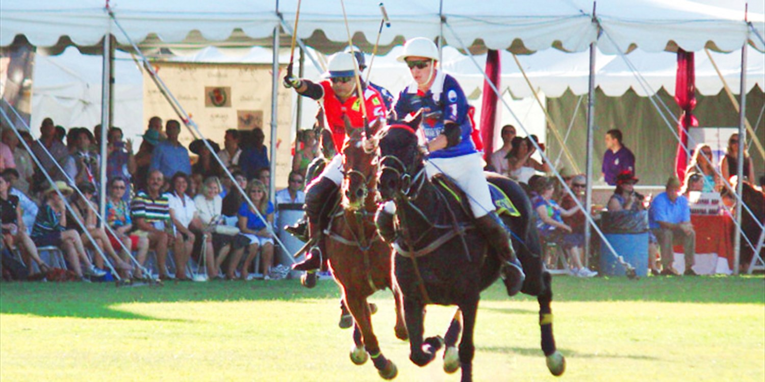 Bentley Scottsdale Polo Championship Tickets: Save up to 75%