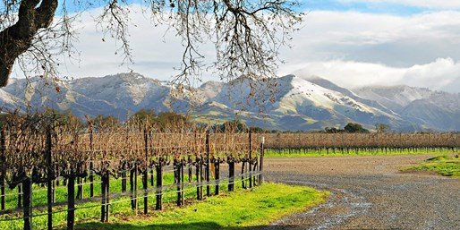 $39 -- Winery Tour w/Tastings & Chocolates for 2, Reg. $84