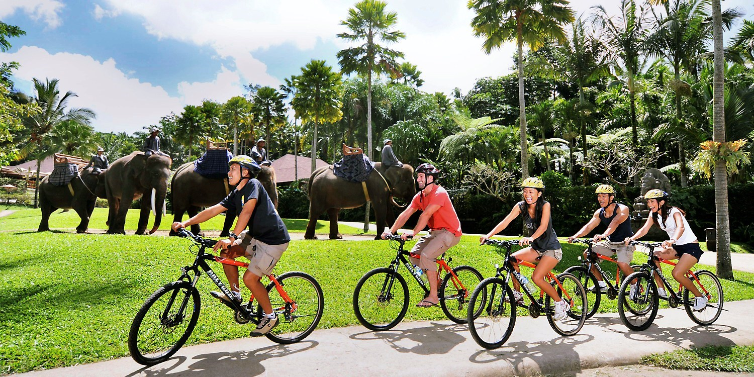 $45 --1/2 Day Bali Bike Tour w/#1-Rated Adventure Co.