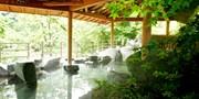 ¥7,400 -- 山梨日帰りワイン旅 絶景広がるブドウ園&BBQ&天空の湯