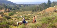$59 -- Scenic 90-Minute Trail Ride w/Wine Tastings, 45% Off
