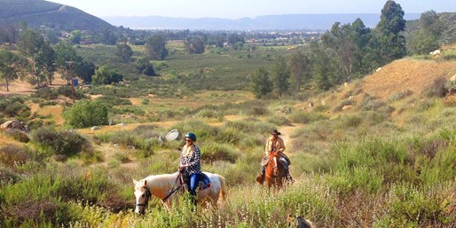 $59 -- Wine Country Horseback Ride w/Tastings thru Summer