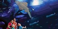 $12-$16 -- SEA LIFE Aquarium Admission, Save over 20%