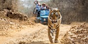 $2299 -- Luxe India 9-Night Trip & Tiger Safari from Toronto