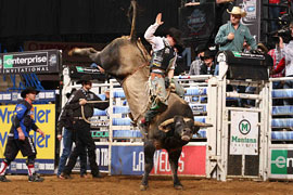 the professional bull riders will be bucking in las vegas for the 2009 built