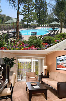 Top: Hotel's pool<br>Bottom: One-bedroom apartment
