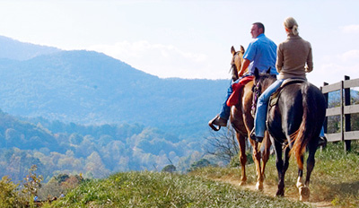 $99 - Georgia: Blue Ridge Mountains Getaway for 2