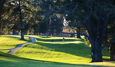 $29 - Blacklake: Unlimited Golf w/Cart & Lunch, Reg. $84