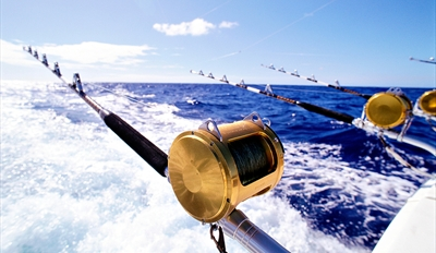 $23 -- 4-Hour Deep Sea Fishing Trip incl. Gear, Reg. $45