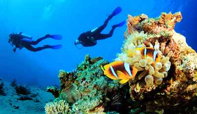 $69 - Scuba Adventure w/2 Open-Water Dives & Gear, Reg. $149