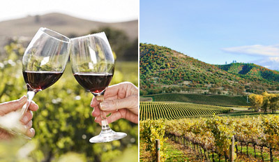 $69 - Temecula: Chauffeured Wine Tour w/Tastings, Reg. $140