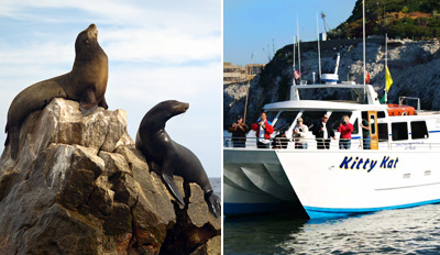 $19 - Scenic Wildlife Boat Tour on the Bay, Reg. $38