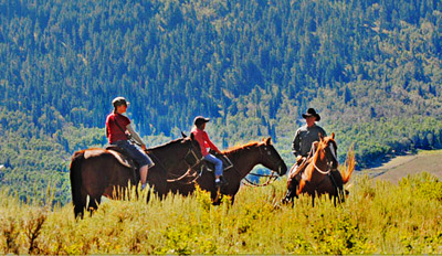 $35 - Guided Mountain Trail Horseback Ride, Reg. $70