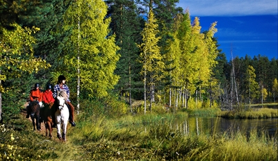 $59 -- Horseback Trail Ride w/Campfire Steak Dinner, $80 Off