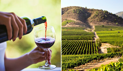$25 - Carmel: Winery Tour & Tastings for 2, Reg. $53