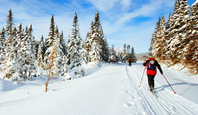 $39 - Cross-Country Skiing in South Lake Tahoe, Save 50%