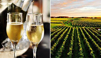 $35 - Niagara Winter Wine Tour w/Tastings, Reg. $89
