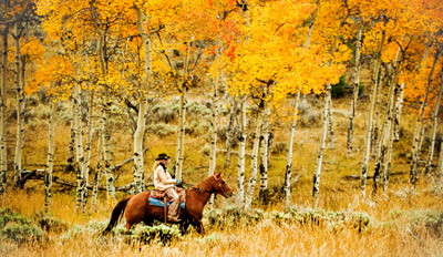 $29 - Fall Hudson Valley Horseback Ride w/Cider, Reg. $60