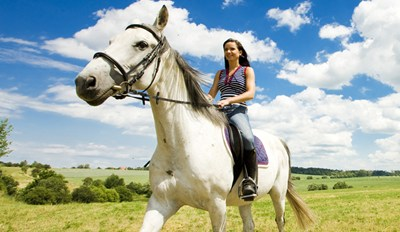 $25 - Scenic Everglades Horseback Trail Ride, Reg. $50