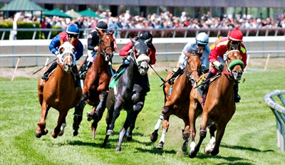 $32 - VIP Golden Gate Fields Horse Racing w/Lunch, Reg. $68