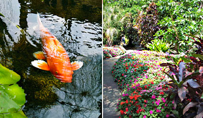 $8 -- Full Day at Sunken Gardens for 2, Half Off