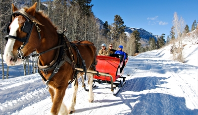$25 -- Breckenridge Sleigh Ride w/Hot Cocoa, Half Off