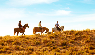$49 - Scenic Horseback Ride w/Wine & Chocolates, Reg. $125