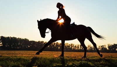 $19 -- Horseback Trail Ride w/Snacks & Drinks, Reg. $40