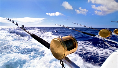 $30 -- Deep Sea Fishing Trip w/Gear Off SD Coast, Half Off