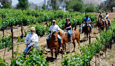 $99 -- Wine Country Horseback Ride w/Tastings, Reg. $240