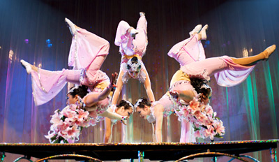 $15 - Cirque Shanghai at Navy Pier, Reg. $30