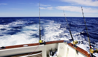 $25 -- Deep Sea Fishing Off Marina del Rey w/Gear, Reg. $49