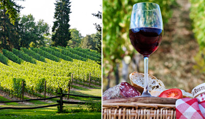 $20 - Bucks County Winery Tour, Class & Tastings for 2