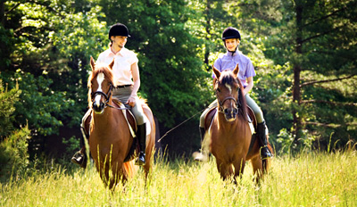 $39 - Guided Horseback Ride thru Kensington Metropark