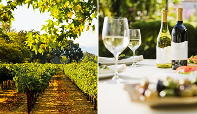 $20 -- Basignani Winery: Tastings & Cheese for 2, Reg. $43