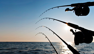 $25 - Deep Sea Fishing Trip w/Gear & Lunch, 55% Off
