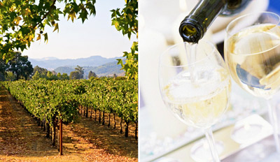 $39 -- Tasting Pass for 2 at 5 Dry Creek Wineries, Reg. $79