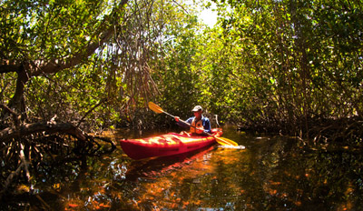 $15 - Cocoa Beach: Thousand Islands Kayak Tour, Half Off