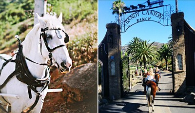 $39 - Scenic Horseback Ride in Bandy Canyon, Reg. $90