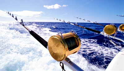 $79 - Semi-Private Half-Day Deep Sea Fishing Trip, Reg. $150